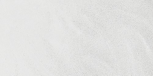 Reflection (White)