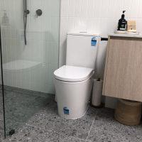 Modern Toilets for a Modern Bathroom