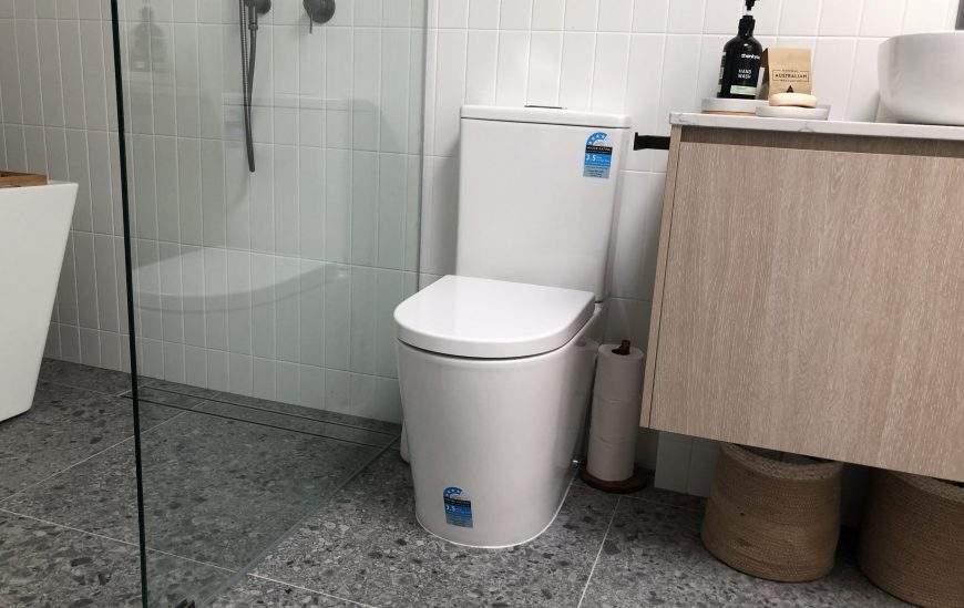 Modern Toilets for a Modern Bathroom